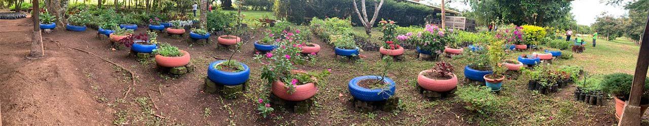 vivero-y-finca-bosq-verde-fundacion-nicaragua-hogar-luceros-del-amanecer